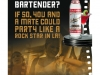 STOLI Global Casting Call Bartender Competition